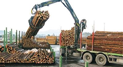 Holzanlieferung der Fichtenstangen